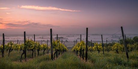 L'invitation au voyage : les vins du monde billets