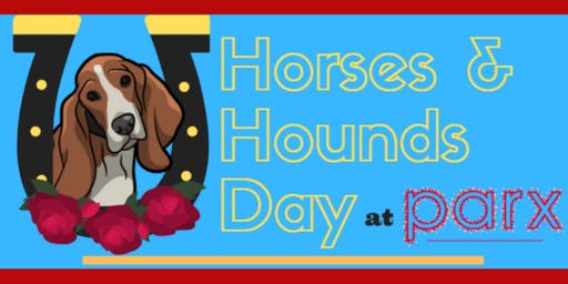 Horses & Hounds Day | Basset Hound Racing