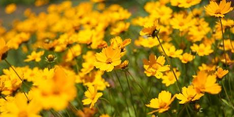 Pollinator Meadow Walking Tour tickets