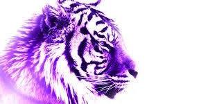 Inaugural Purple Rage Alumni Tournament