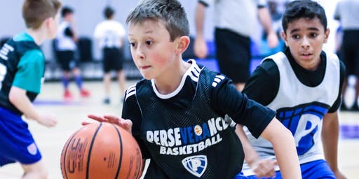 Perseverance 2019 PBG Summer Youth Basketball League