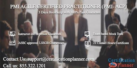 PMI Agile Certified Practitioner (PMI-ACP) 3 Days Classroom in Ottawa tickets