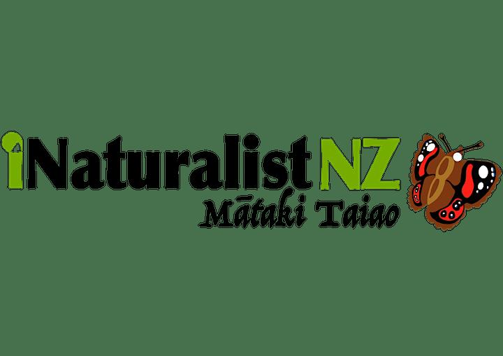 City Nature Challenge Christchurch 2019 - Field Trip Registration image