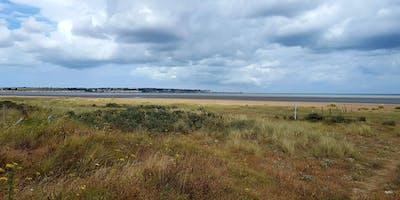 Habitat Condition Survey Training Day - Dunes