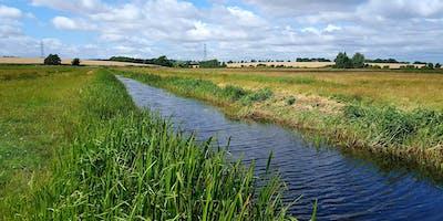 Habitat Condition Survey Training Day - Wetland