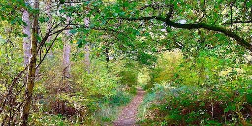 Brampton Woods: Wildlife & Nature Walk