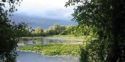 Paxton Pits: Nature & Wildlife Walk