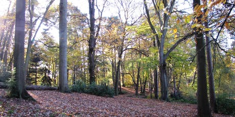 Autumn Treasure Hunt at Lily Hill Park tickets