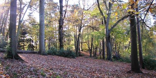 Autumn Treasure Hunt at Lily Hill Park