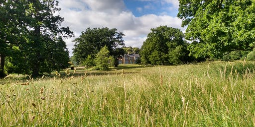 The Great Outdoors at Lily Hill Park