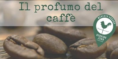 Il profumo del caffè: dal chicco alla tazzina