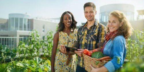 Regional Food Economies - Changing the food system to be better, not bigger