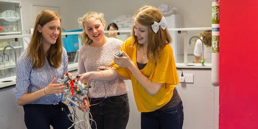 Summer Schools: Electrical circuits (age 10–12)