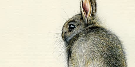 DRAW A WILD BUNNY WITH COLOURED PENCILS tickets