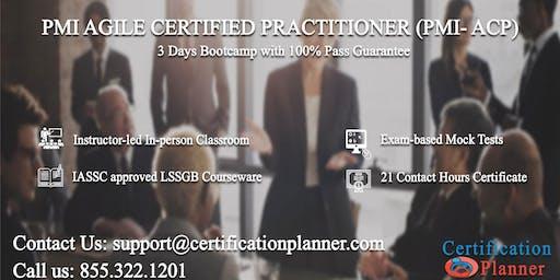 PMI Agile Certified Practitioner (PMI-ACP) 3 Days Classroom in Sacramento