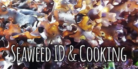 Seaweed Foraging & Cooking tickets