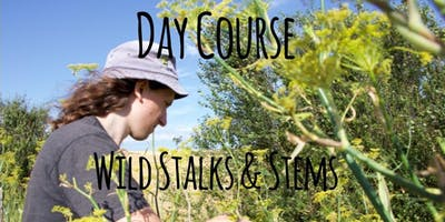 Foraging Wild Stalks & Stems
