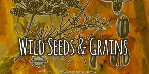 Foraging & Cooking with Wild Seeds & Grains