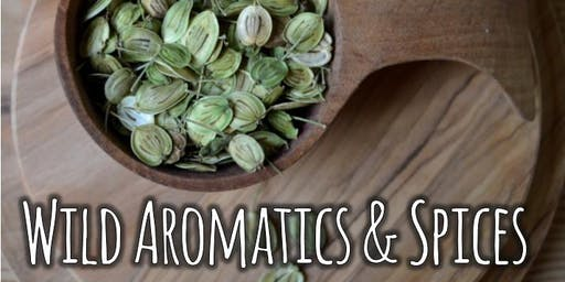 Cooking with Wild Aromatics & Spices