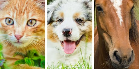 Holistic Animal Care Conference tickets