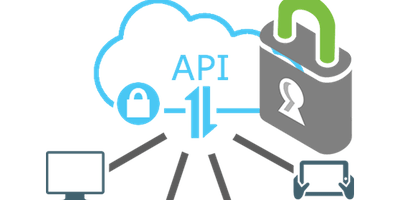 OWASP: Ignoring API Security is Risky Business