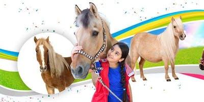 All About Horses Summer 8 Week Class- Deposit