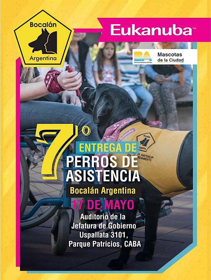 Imagen de 7ª Entrega de Perros de Asistencia . Bocalán Argentina