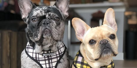 Chavo & Steele's Frenchie Meetup Tickets