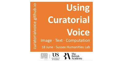Using Curatorial Voice