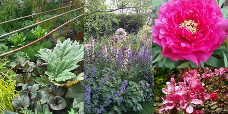 Designing with Plants Workshop tickets