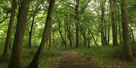 Forest Bathing+. Woodland Therapy tickets
