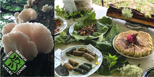 Fall Wild Edible Plants & Mushrooms