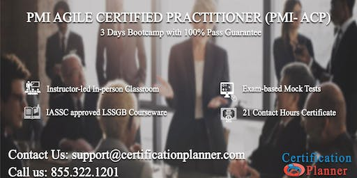 PMI Agile Certified Practitioner (PMI-ACP) 3 Days Classroom in Pierre