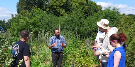 The Natural Beekeeper (two workshops)  | Bee Stewardship Series tickets