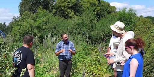 The Natural Beekeeper (two workshops)  | Bee Stewardship Series