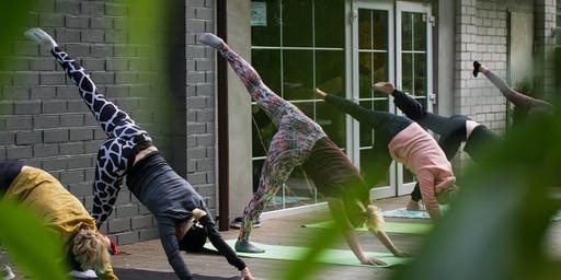 Bend & Brew - Yoga and Beer Event