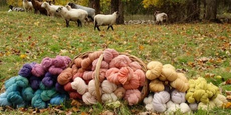 Natural Dye Workshop with New England Farm to Fiber tickets