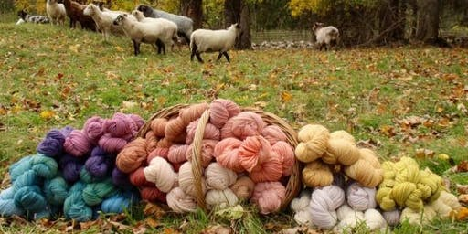 Natural Dye Workshop with New England Farm to Fiber