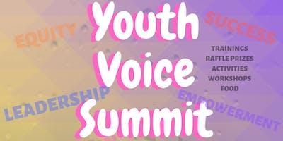 Youth Voice Summit 2019
