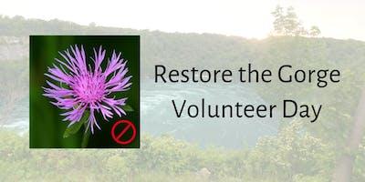 Niagara Gorge Volunteer Work Day