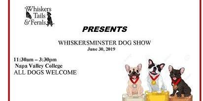 Whiskersminster Dog Show