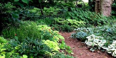 Shade Garden Design Workshop