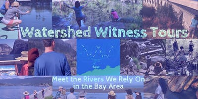 Watershed Witness Tours ~ Local Bay Area ~ San Leandro Creek