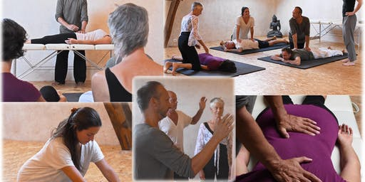 Shiatsu massage and Pranic Healing Certified Course