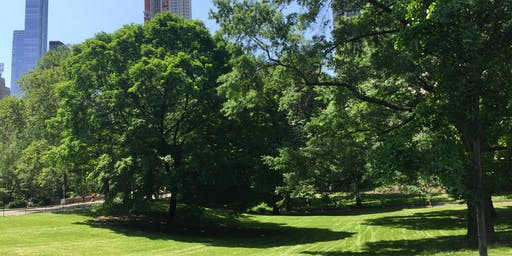 Yoga in Central Park  - Fall 2019