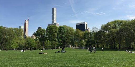 Meditation in the Park - Self-Love