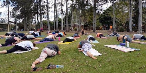 Free Yoga & Flow in Samford