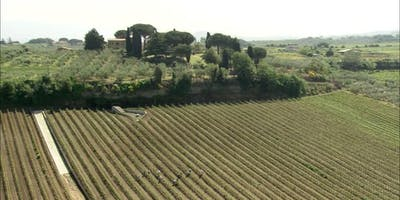 Wine Tasting: A tour of Lazio from Viterbo to Terracina