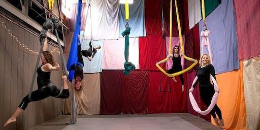 Omingbird Aerial Gym Student Showcase