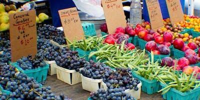 Farmer%27s+Market+Field+Trip+%26+Market+Haul+
